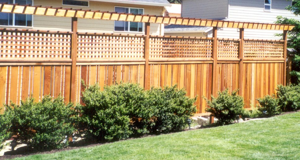 fence trellis ideas